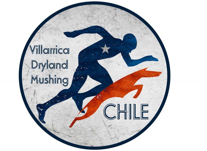 Villarrica Dryland Mushing