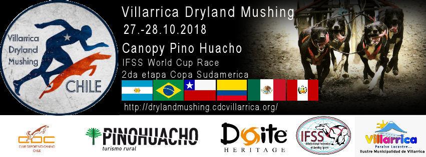 Dryland Mushing Villarrica